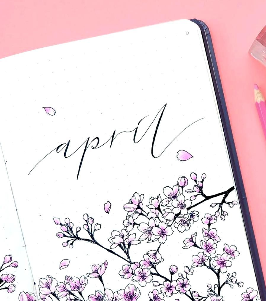 Bullet journal monthly cover page April cover page hand lettering cherry blossom drawing  kohanadiar
