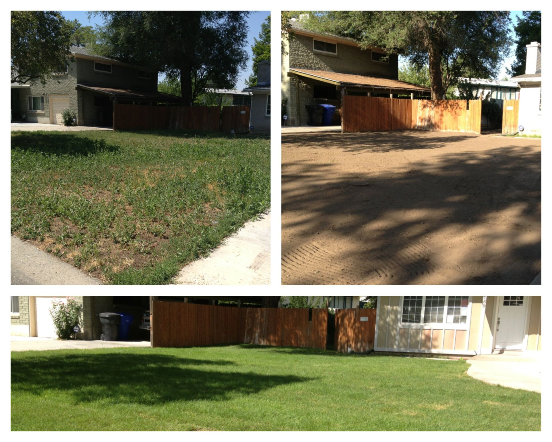In Holladay Utah we took this home and completely remade the yard. 7000 sq ft of debris was removed and graded to lay new sod.