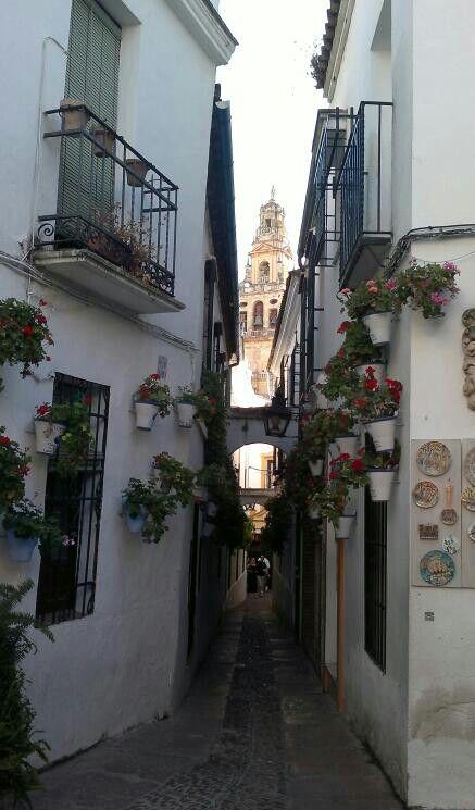 Calleja de las flores. Córdoba