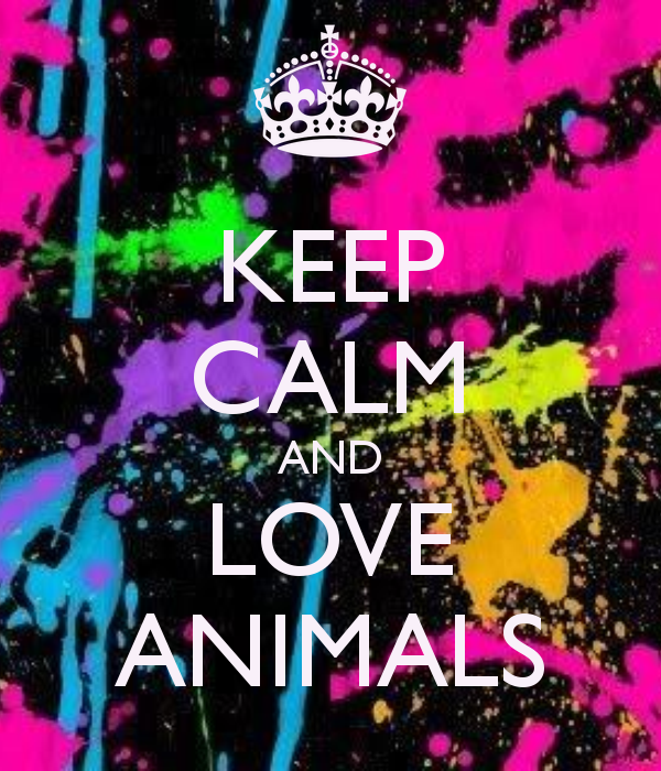 Keep Calm and... Love the annoying, stealing, eating machine (dog)...