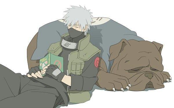Hatake Kakashi, sleeping, book, ninja dog, cute; Naruto