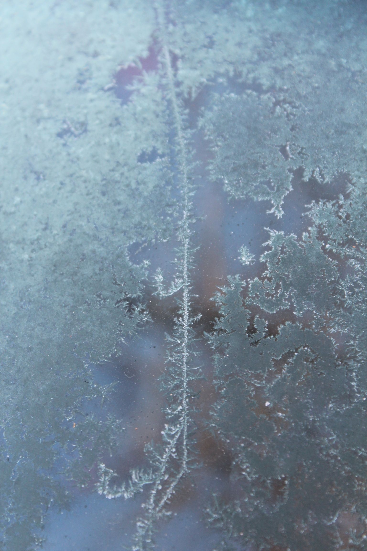 Frost on the car. Asheville!!!