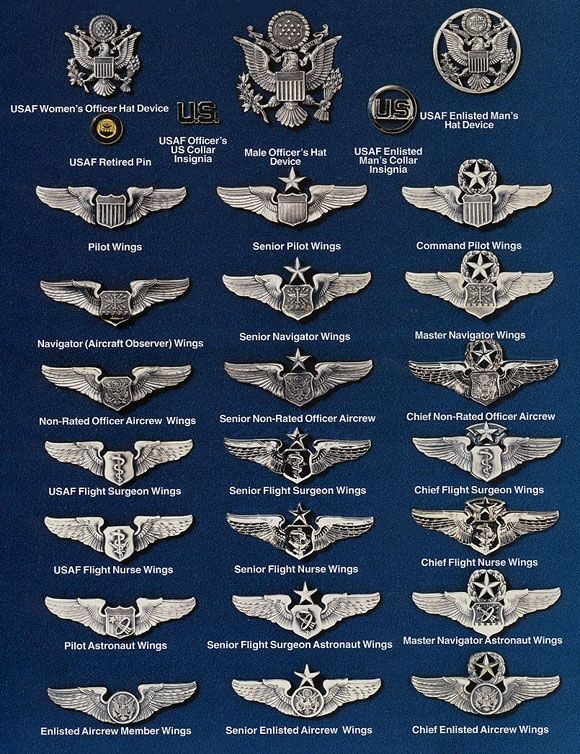 "USAF United States Air Force ""WINGS"" Chart Military"