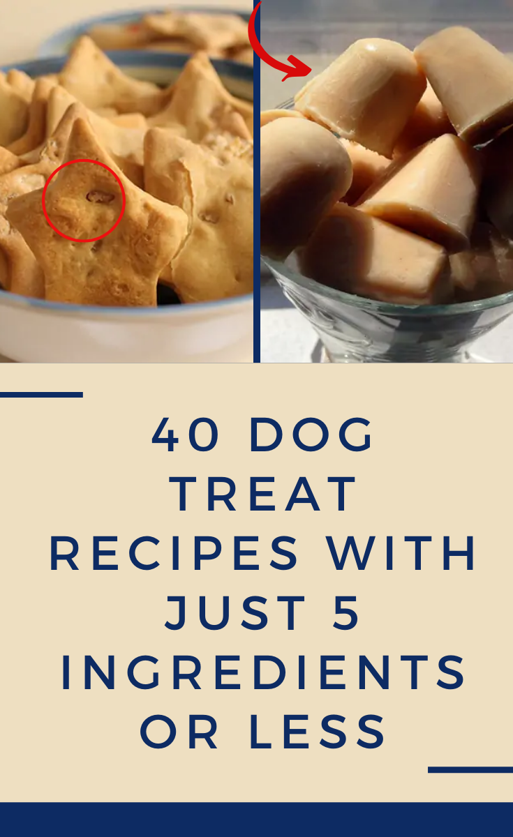 40 dog treat recipes with just 5 ingredients or less