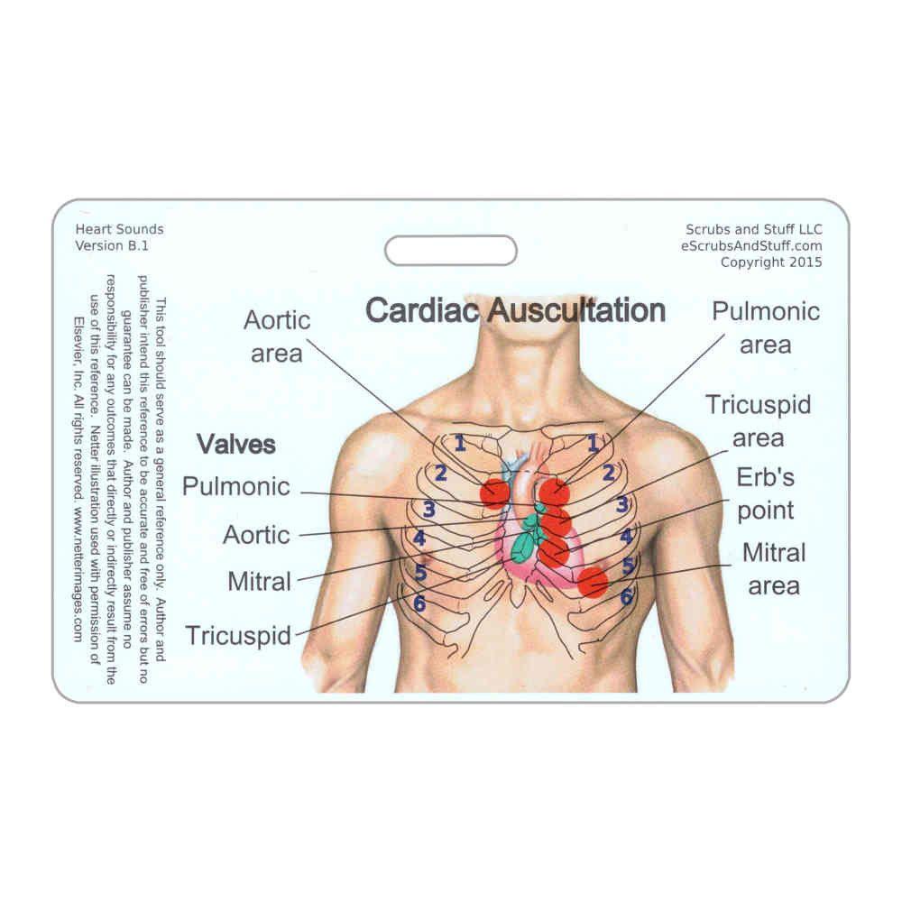 Heart Sounds Horizontal Badge Card