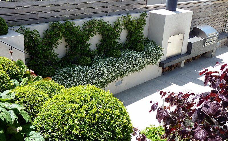 A view to the outside fireplace & BBQ and jasmine espalier | Tinakori, HEDGE Garden Design & Nursery