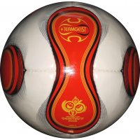 Official Football From The Fifa World Cup 2006 Ball World Cup Soccer Balls
