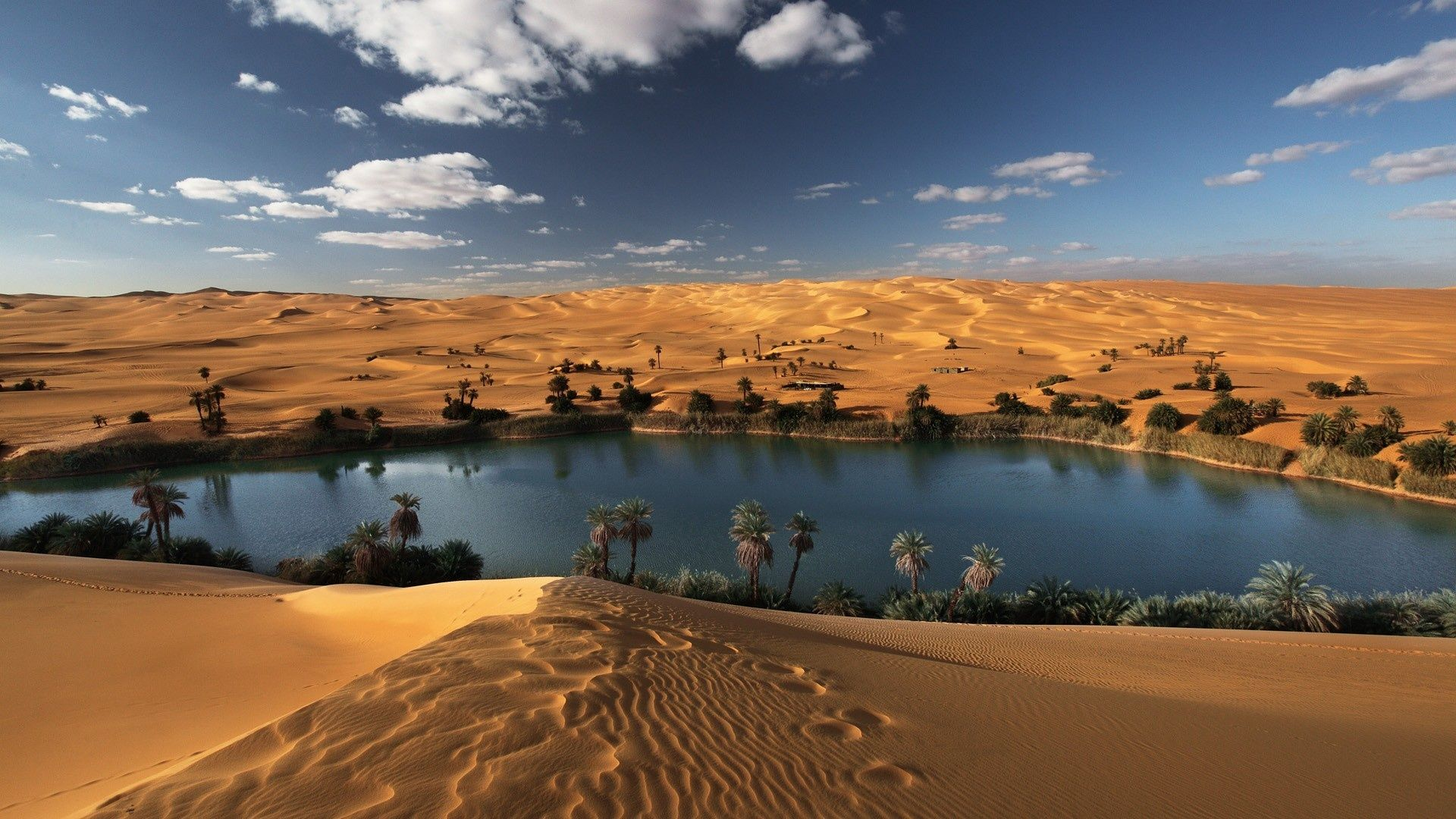 oasis libyan desert hd desktop wallpaper images and photos desertos o sis pinterest oasis. Black Bedroom Furniture Sets. Home Design Ideas