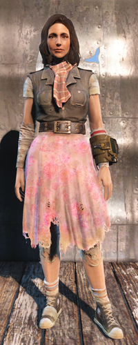 Ratty skirt (Fallout 4)