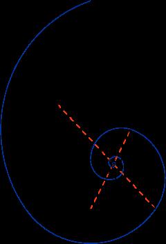 240px Golden Triangle And Fibonacci Spiral Svg Png 240 352 Fibonacci Spiral Geometry Art Fibonacci