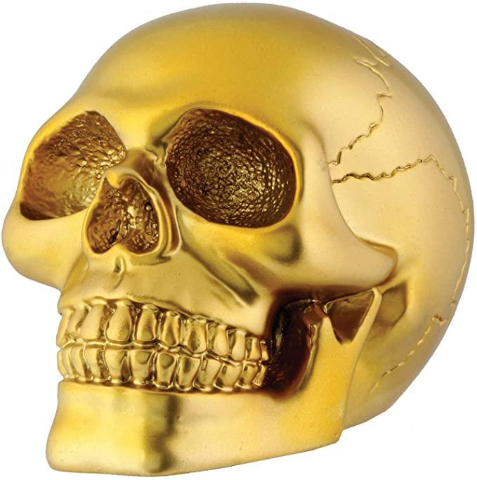 Amazon Com Gold Skull Head Collectible Skeleton Decoration Figurine Model Home Kitchen In 2020 Skull Decor Skeleton Decorations Skull