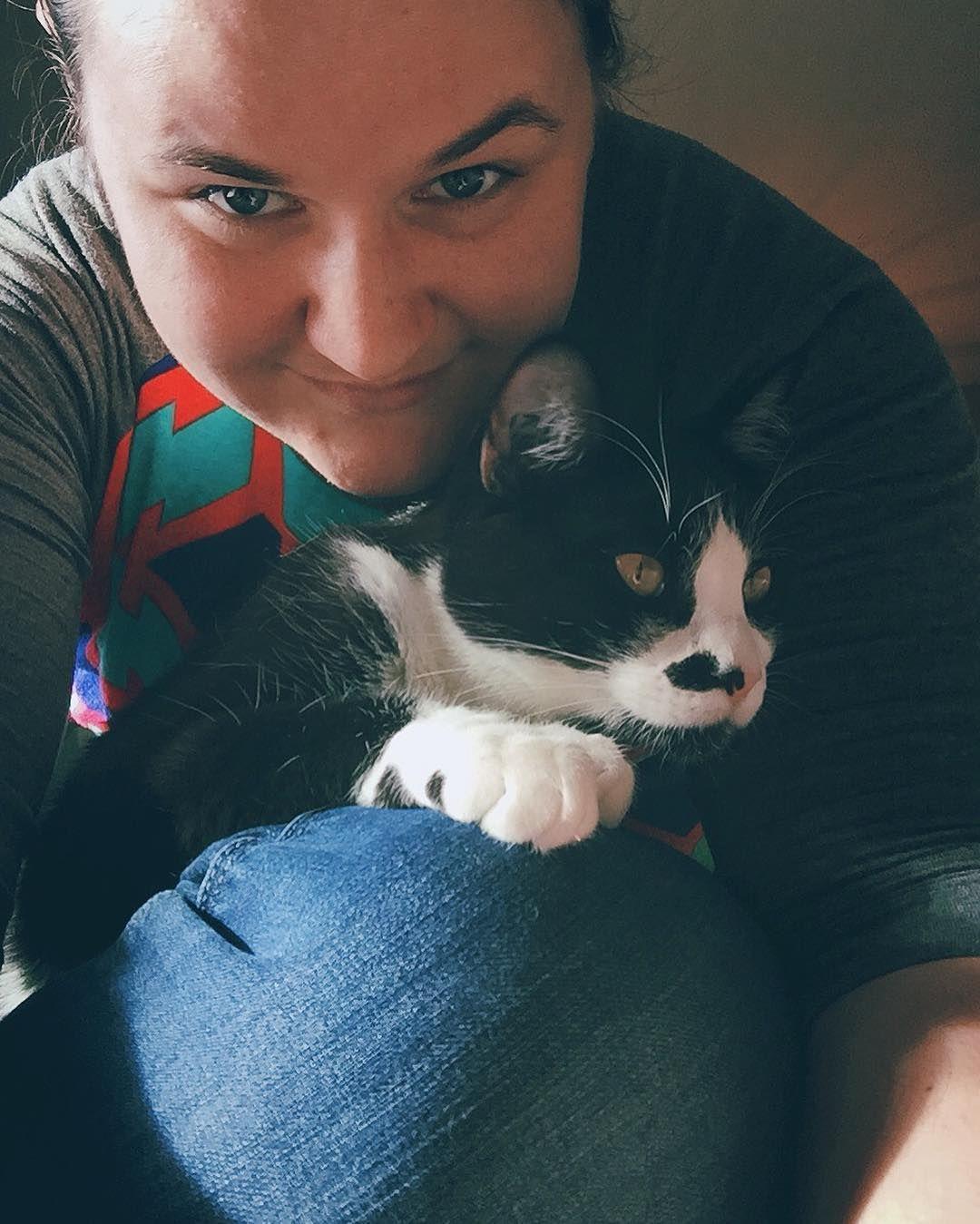 He misses me. (: #TuxedoCatsOfInstagram #TuxedoCats #SirBandit #Meow #Cat #FynnAndBandit #CatsOfInstagram #KittysOfInstagram #Kitten by domaflinkieg http://www.australiaunwrapped.com/