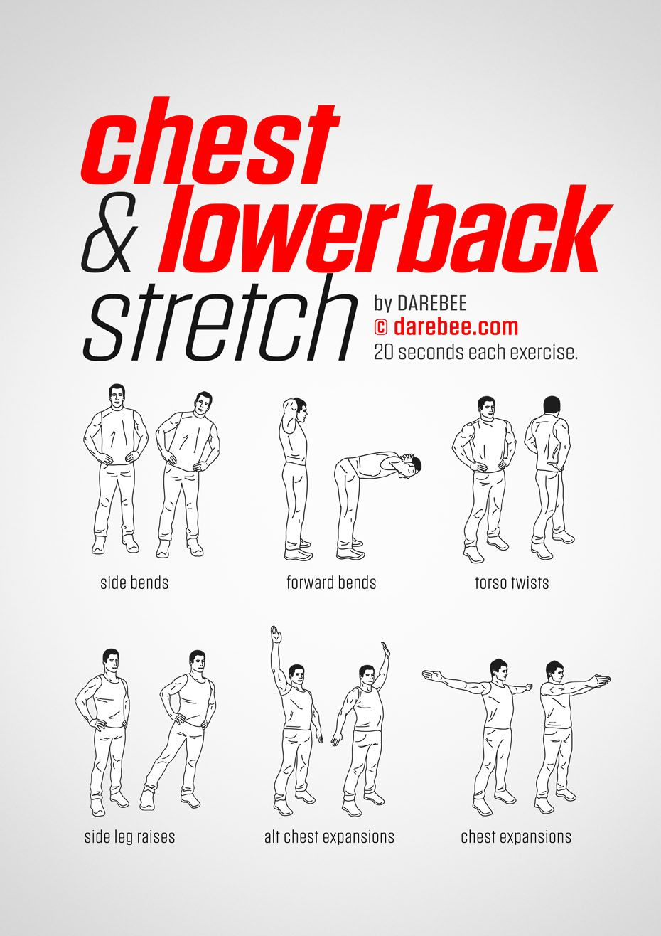 Chest & Lower Back Workout Muscle Pinterest Exercice