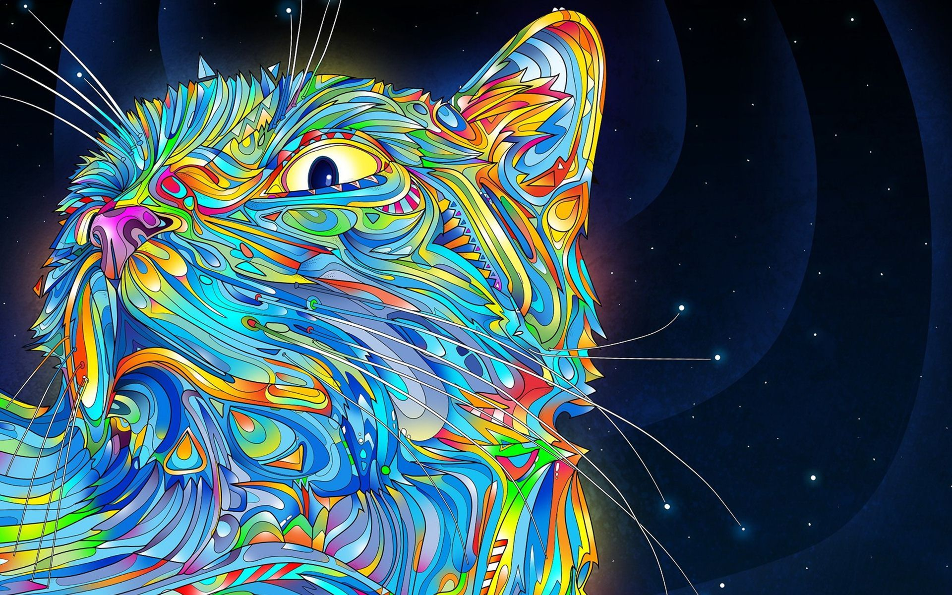 Cat Trippy Creative Colorful Wallpaper High Quality Wallpapers Cat Wallpaper Trippy Cat Art