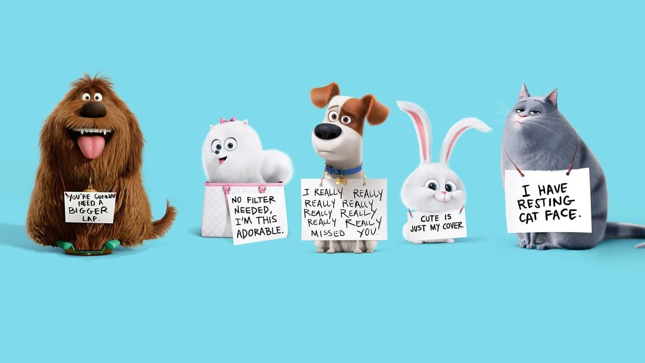 Download Free The Secret Life Of Pets Wallpapers For Your Mobile