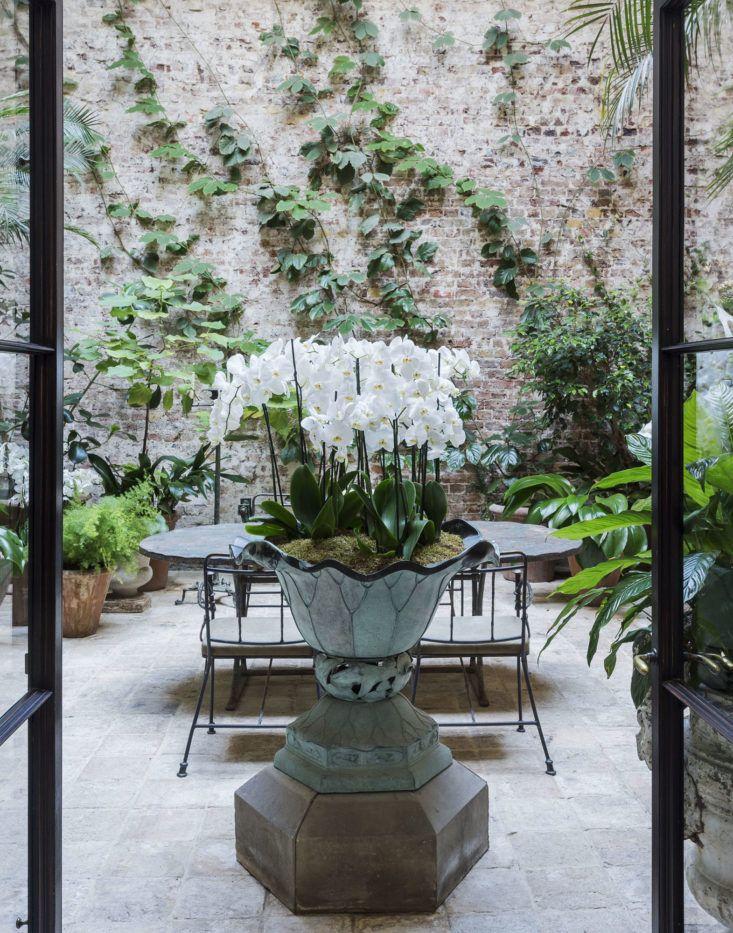 Designer Rose Uniacke London conservatory greenhouse garden