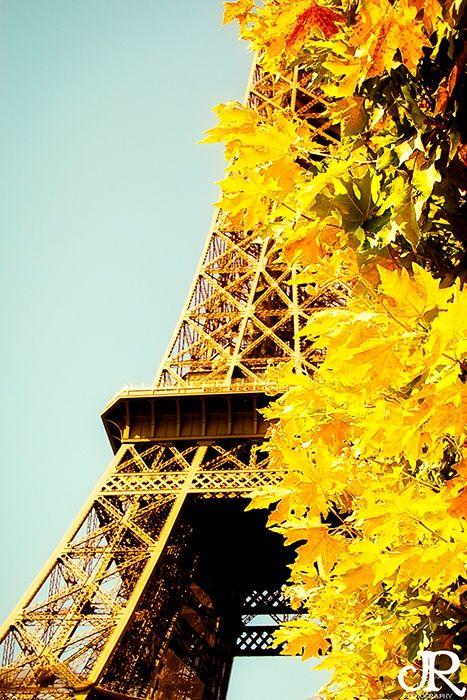 Autumn Gold Paris