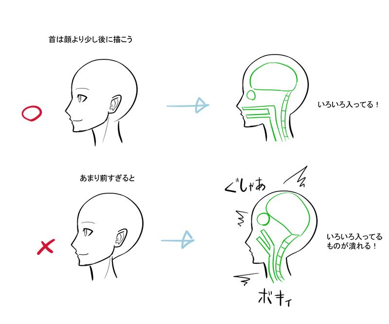 上半身のバランスを整えるキーパーツ 首の描き方 いちあっぷ 描き方 イラスト 横向き イラスト