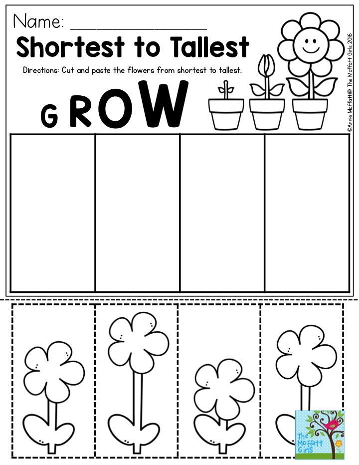 Shortest to Tallest Perfect for a gardening unit in Preschool – Cut and Paste Worksheets for Preschoolers