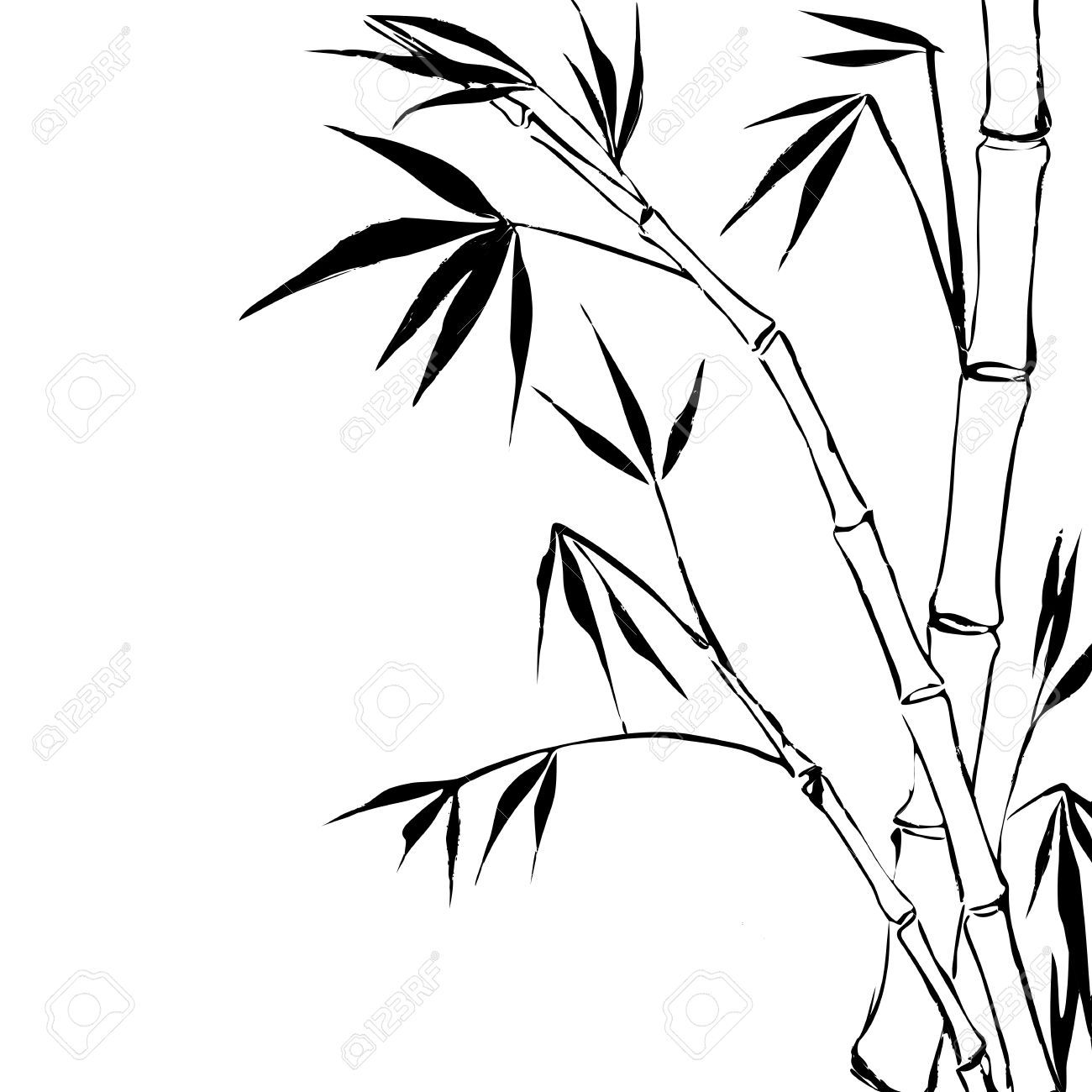 bamboo coloring pages - bamboo plants drawing images