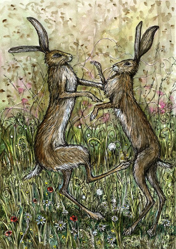 Image result for painting and artwork of hares boxing Pinterest