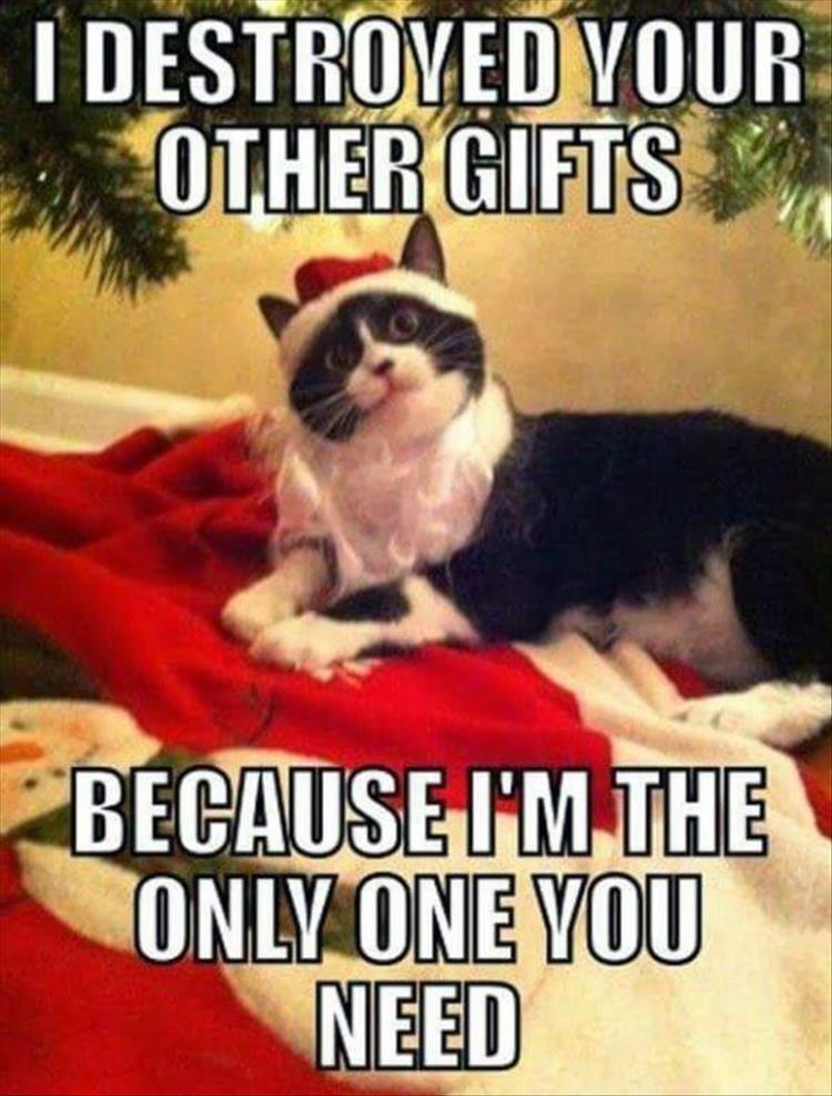 Christmas Funny Meme Dump 30 Pics #christmasfunny
