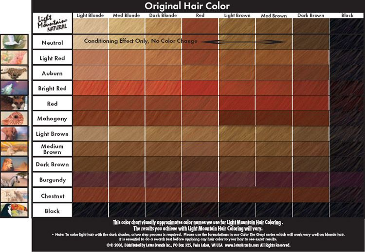 Light Mountain Natural Henna Color Chart  Absolutely  Pure