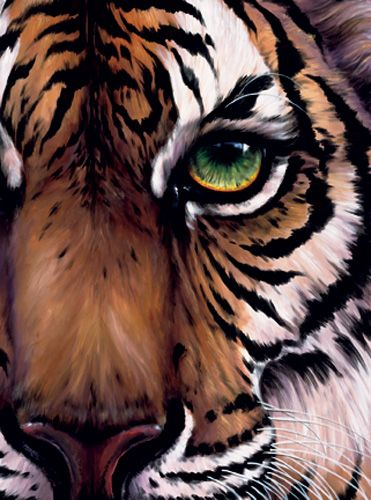 If liz wants to do a giraffe i can totally do a tiger i for Easy acrylic animal paintings