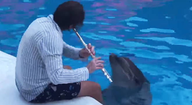 A flautist serenaded two Bachloving dolphins, and it went