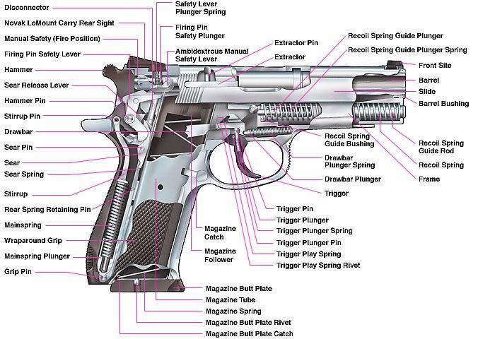 Shotgun Internal Diagram Largest Wiring Diagram Database
