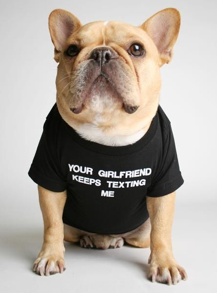 Your Girlfriend Dog Tee Bulldog Puppies French Bulldog Puppies