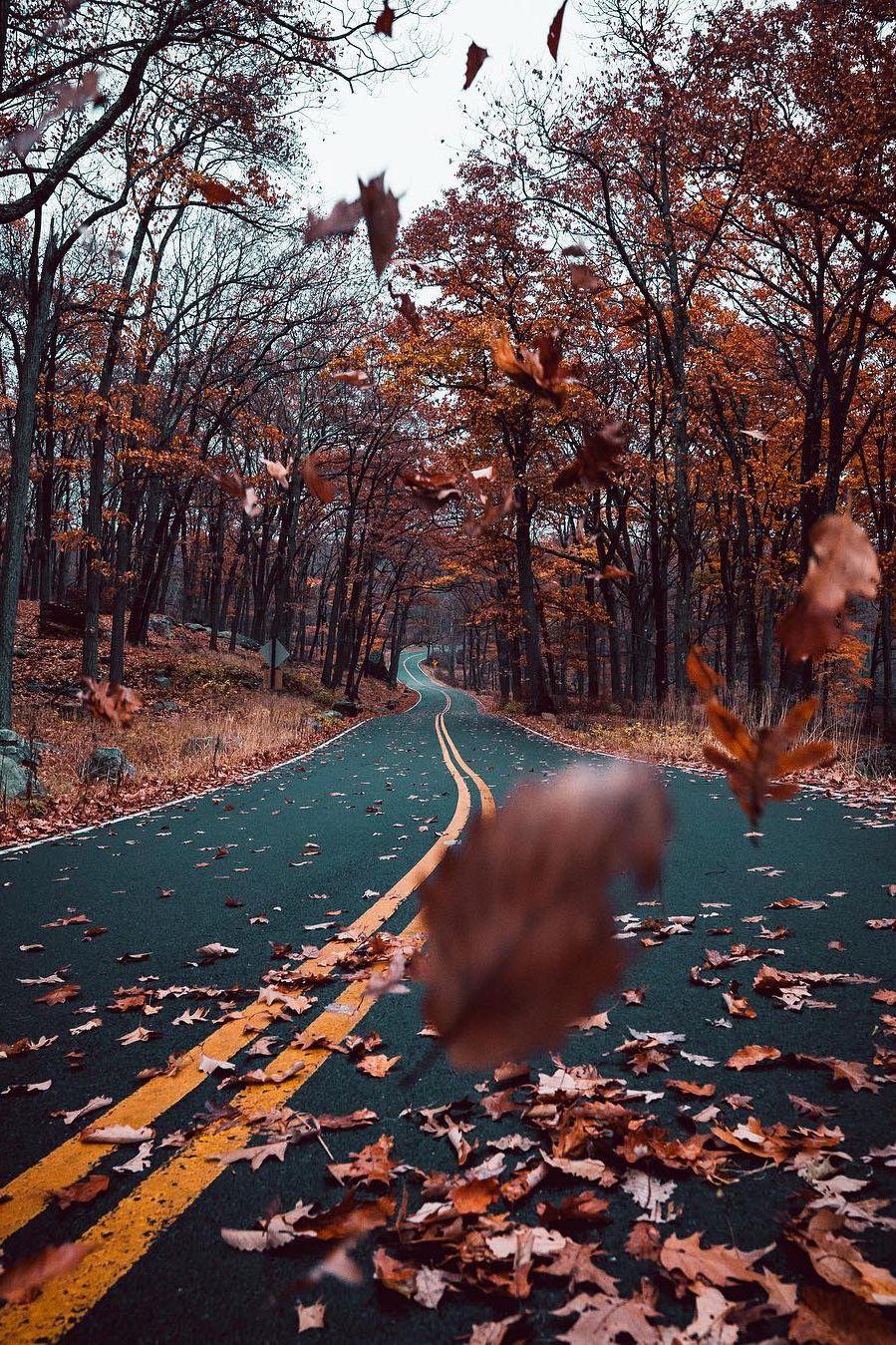 Halloween speed dating pictures tumblr ocean