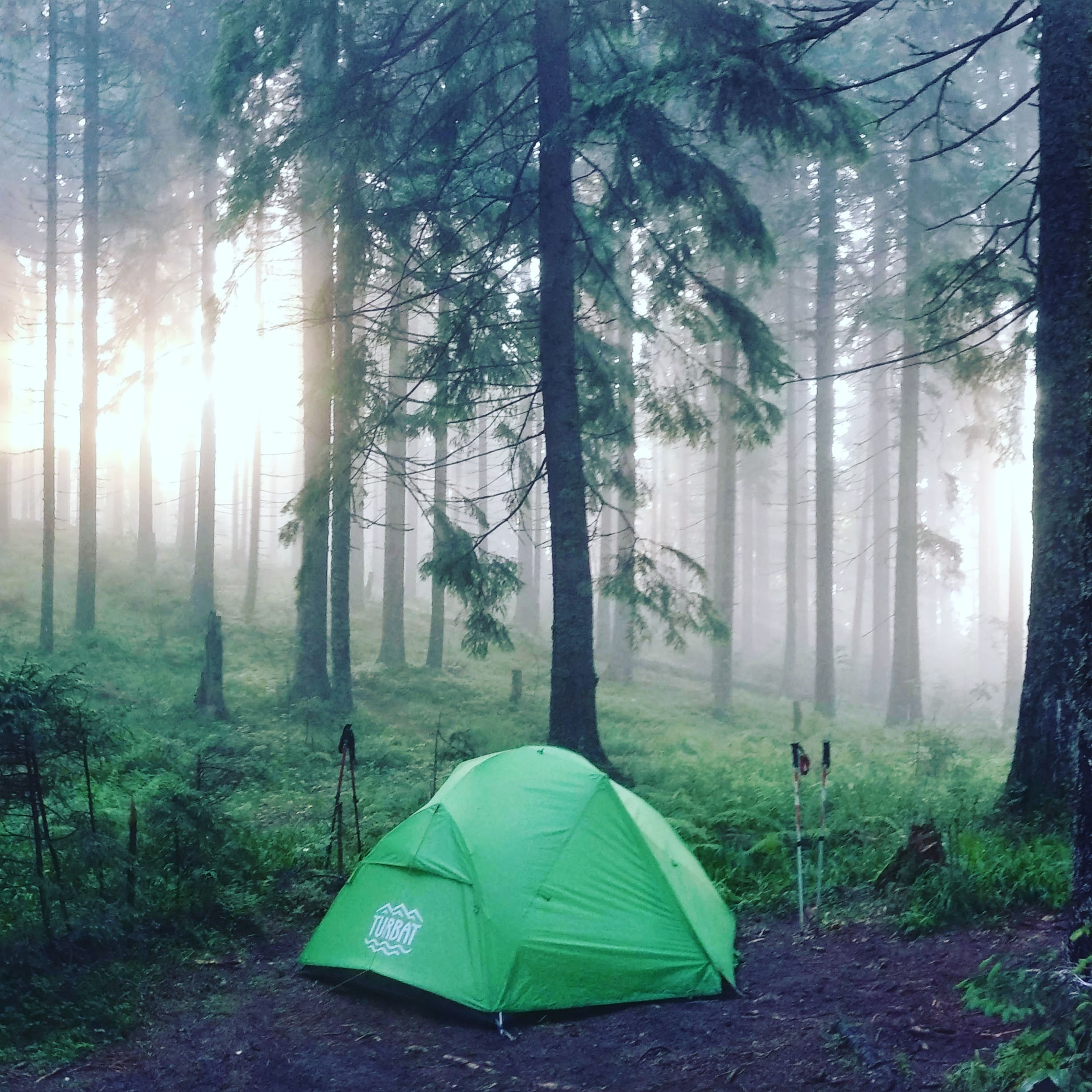 Let S Camp Camping Photography Adventure Camping Starry Night Camping Hd wallpaper tent camping forest fog