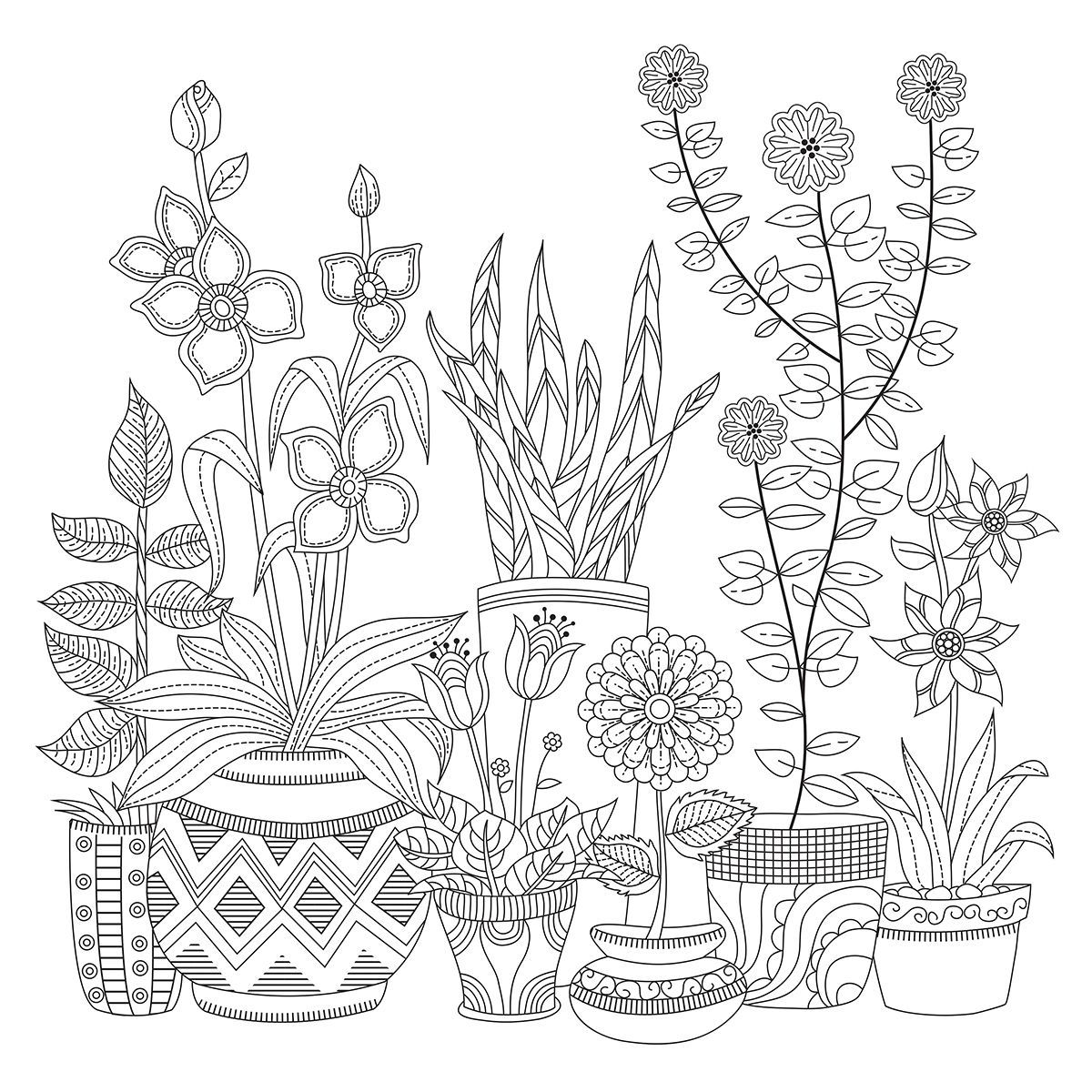 Kaisercolour Coloring Poster 27 X19 Plant Pots Colorful Drawings Pattern Coloring Pages Flower Drawing