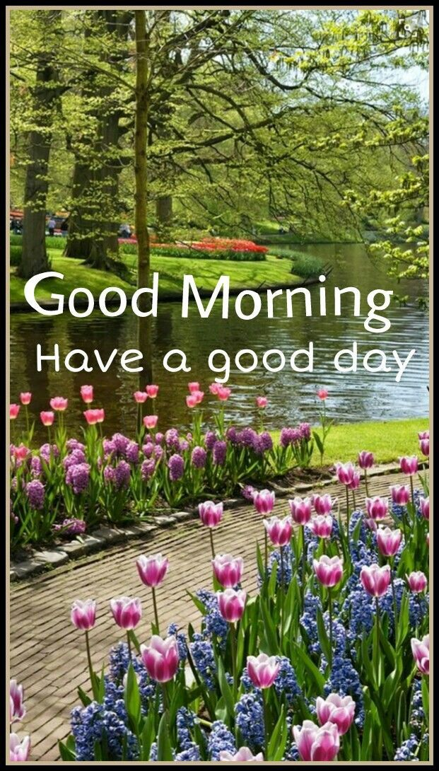 Good Morning Have A Good Day Morning Good Morning Morning Quotes Good Morning Beautiful Gardens Spring Garden Beautiful Landscapes