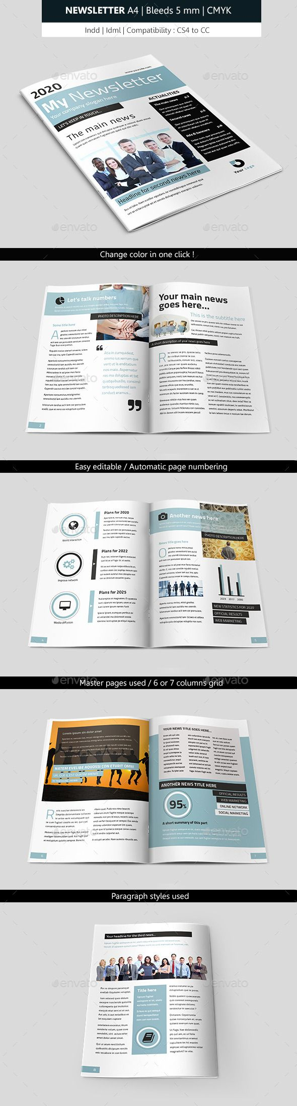 Business Indesign Newsletter Template