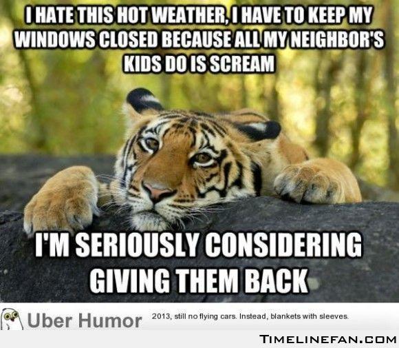 Fun Wife Meme : Summer jokes cute wife for sale click here