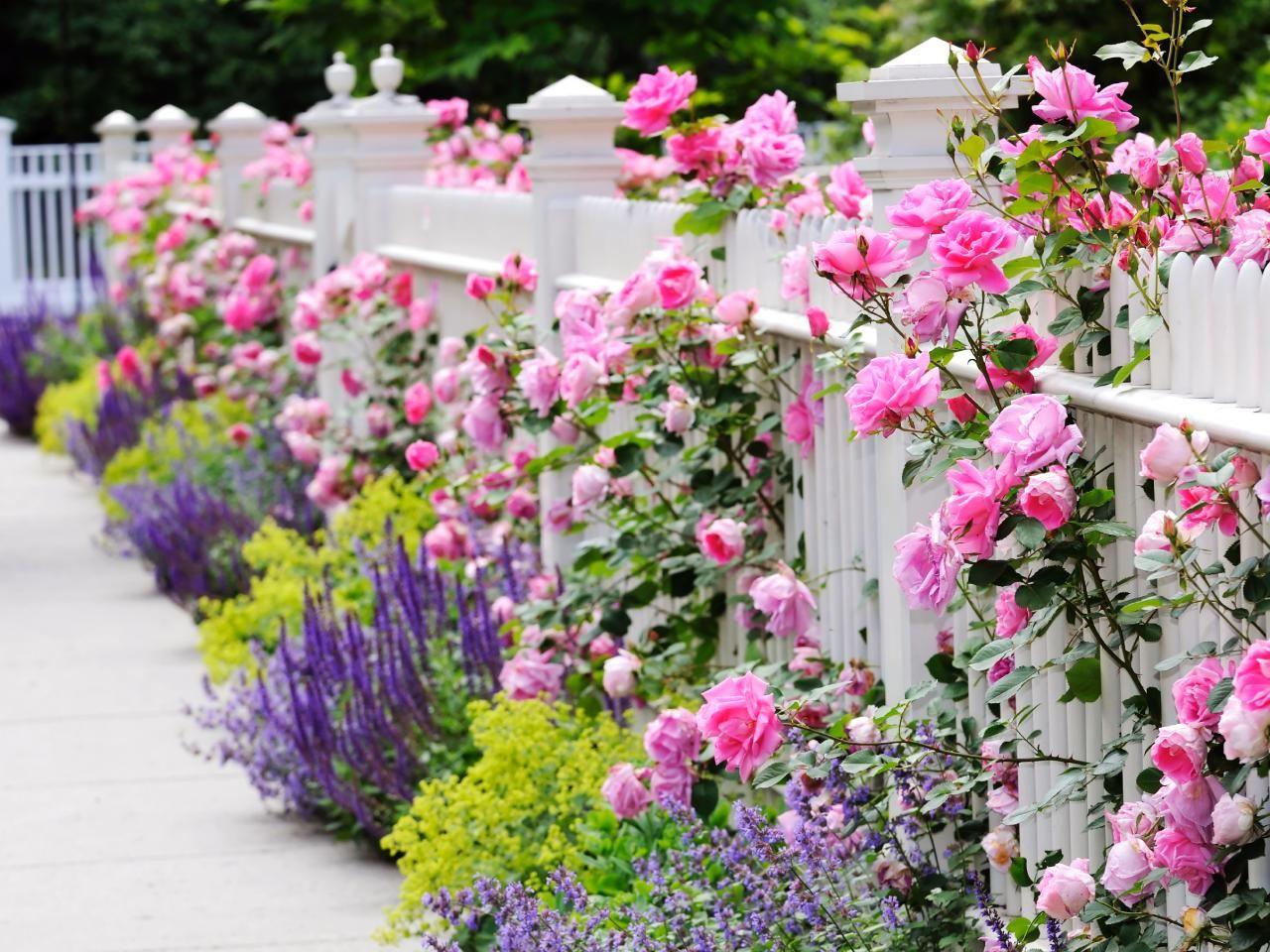 Four Beautiful Landscape Updates | Outdoor Design - Landscaping Ideas, Porches, Decks, & Patios | HGTV