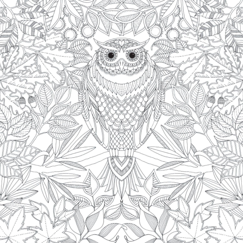 livre coloriage anti stress jardin