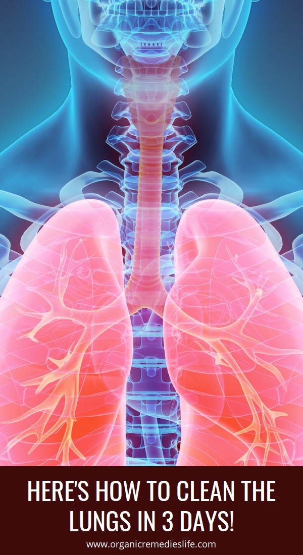 Here's How to Clean the Lungs in 3 Days! in 2020 | Herbal ...