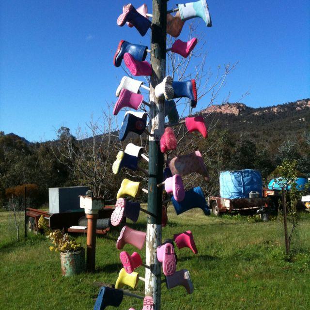 Gum tree | Creative, Outdoor decor, Outdoor