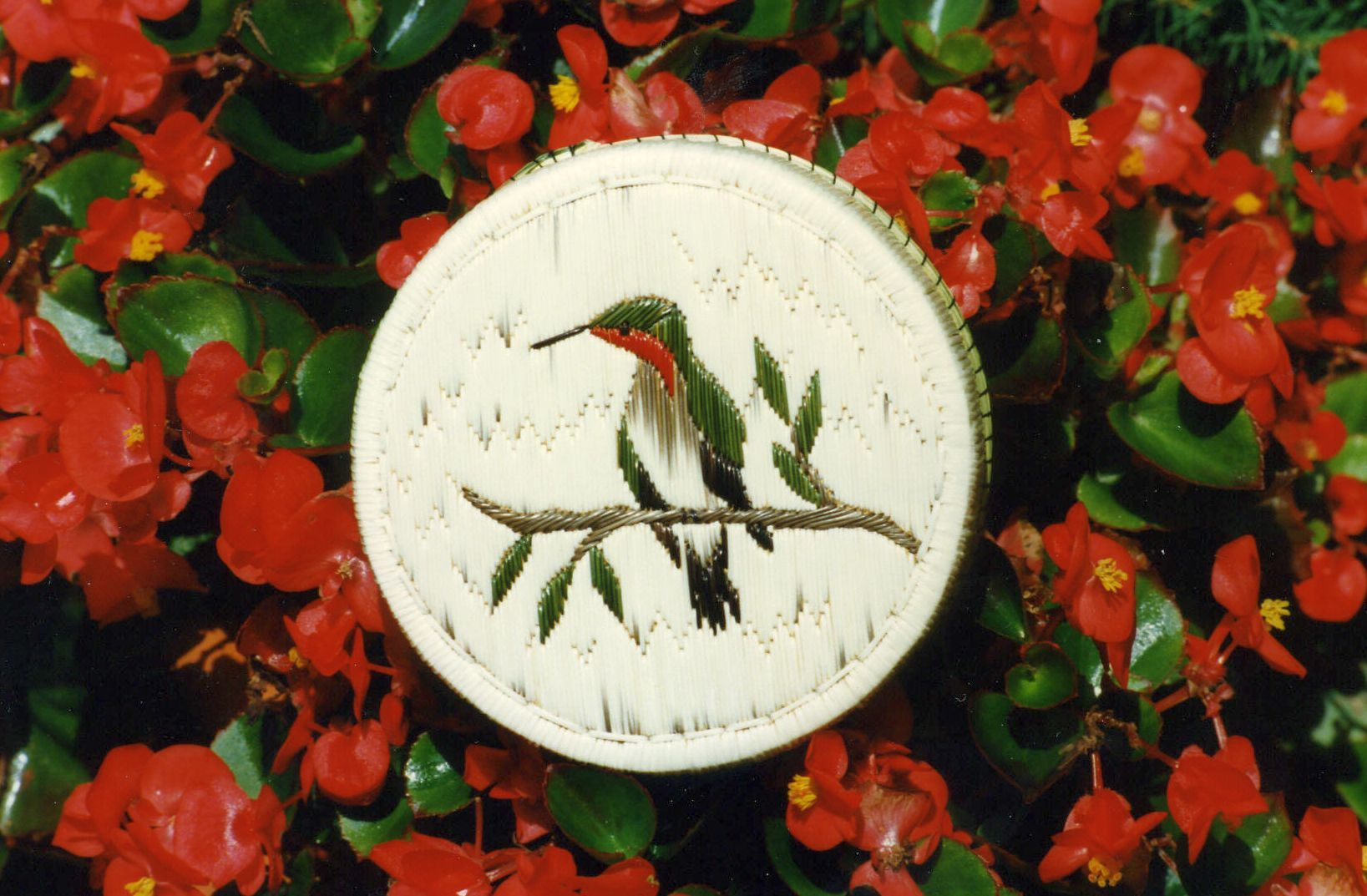 The art of decorating boxes, baskets and garments with porcupine quills is unique to North America. Indians living in the Great Lakes area were doing quill work long before the first European arrived. This hummingbird design quill box was made by Ojibway Irene Desmoulin of Wikwemikong, Ontario, Canada.  Decorative quill work is called Gaweug by the Ojibway tribe.