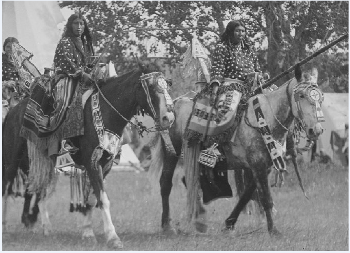 Crow women on parade.  Detail from a Throssel photo early 20th century.  Univ of Wyoming