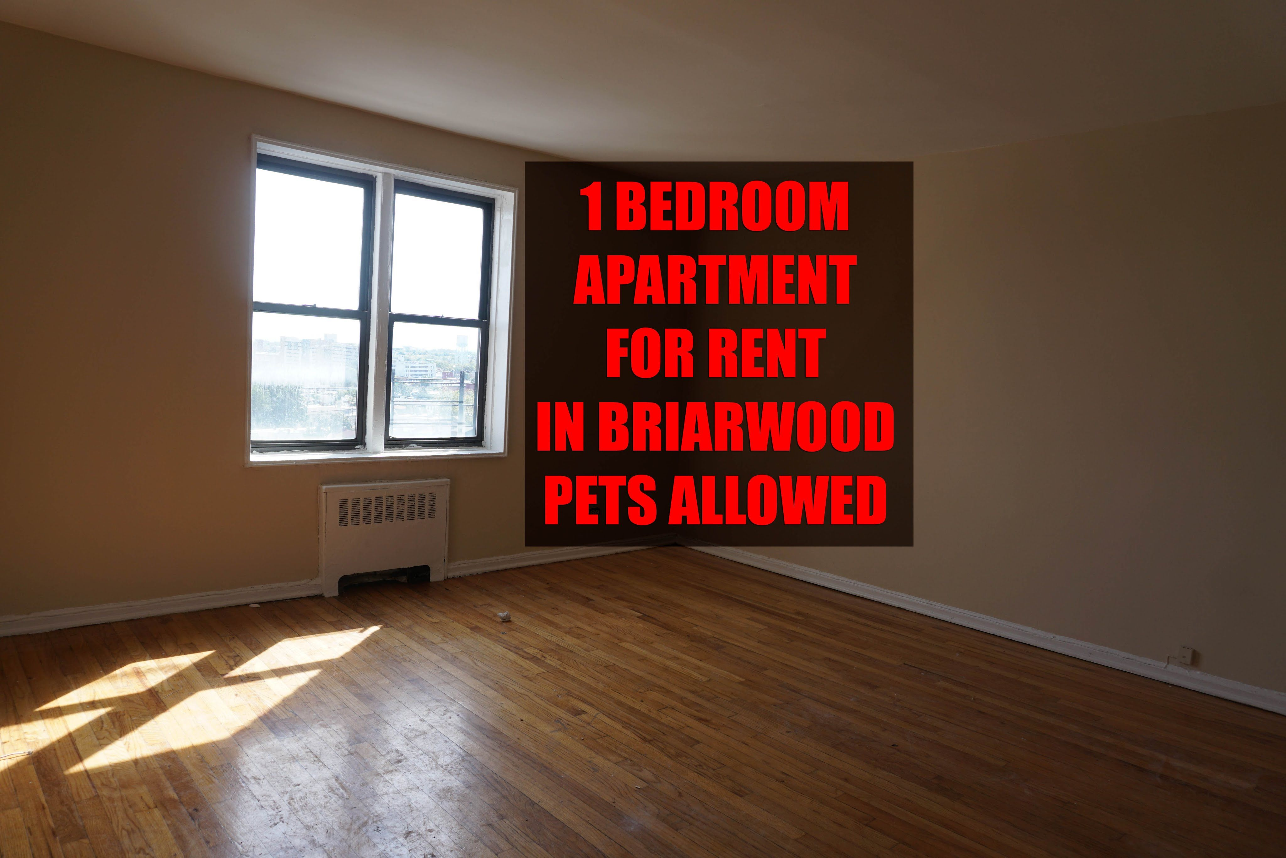 1 bedroom apartment with nice view for rent in briarwood