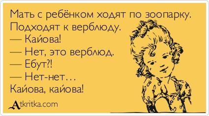 Мать с ребёнком ходят по зоопарку. Подходят к верблюду. — Кайова! — Нет, это верблюд. — Ебут?! — Нет-нет… Кайова, кайова! / открытка №239858 - Аткрытка / atkritka.com