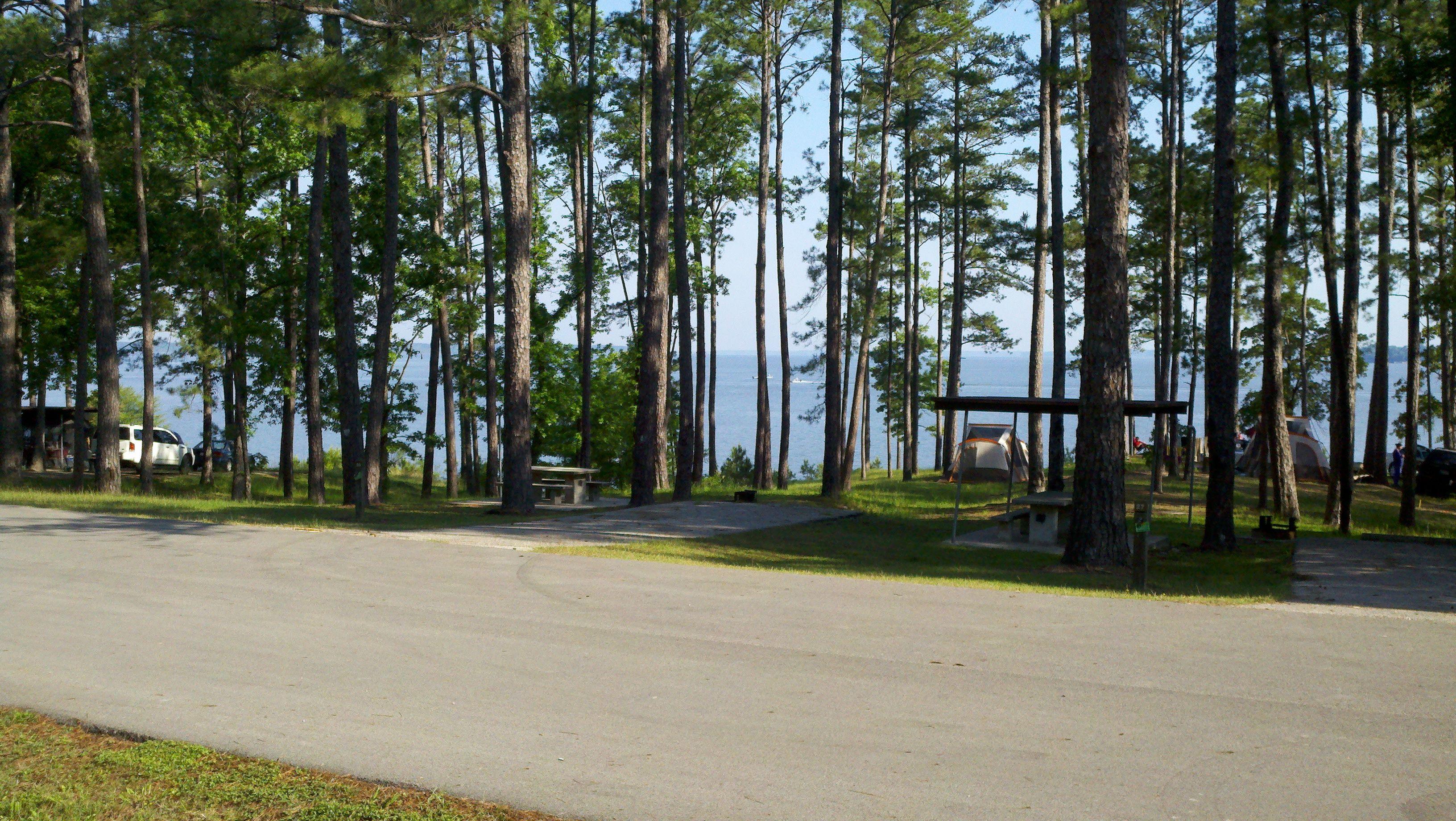 Twin Dikes Lake Sam Rayburn Jasper Tx From Campsite