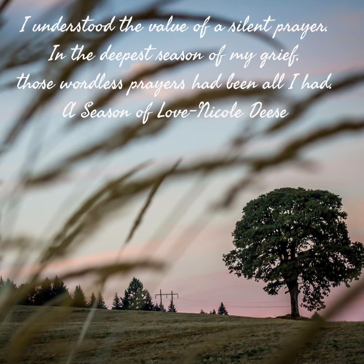 Willa quote A Season To Love by Nicole Deese Books