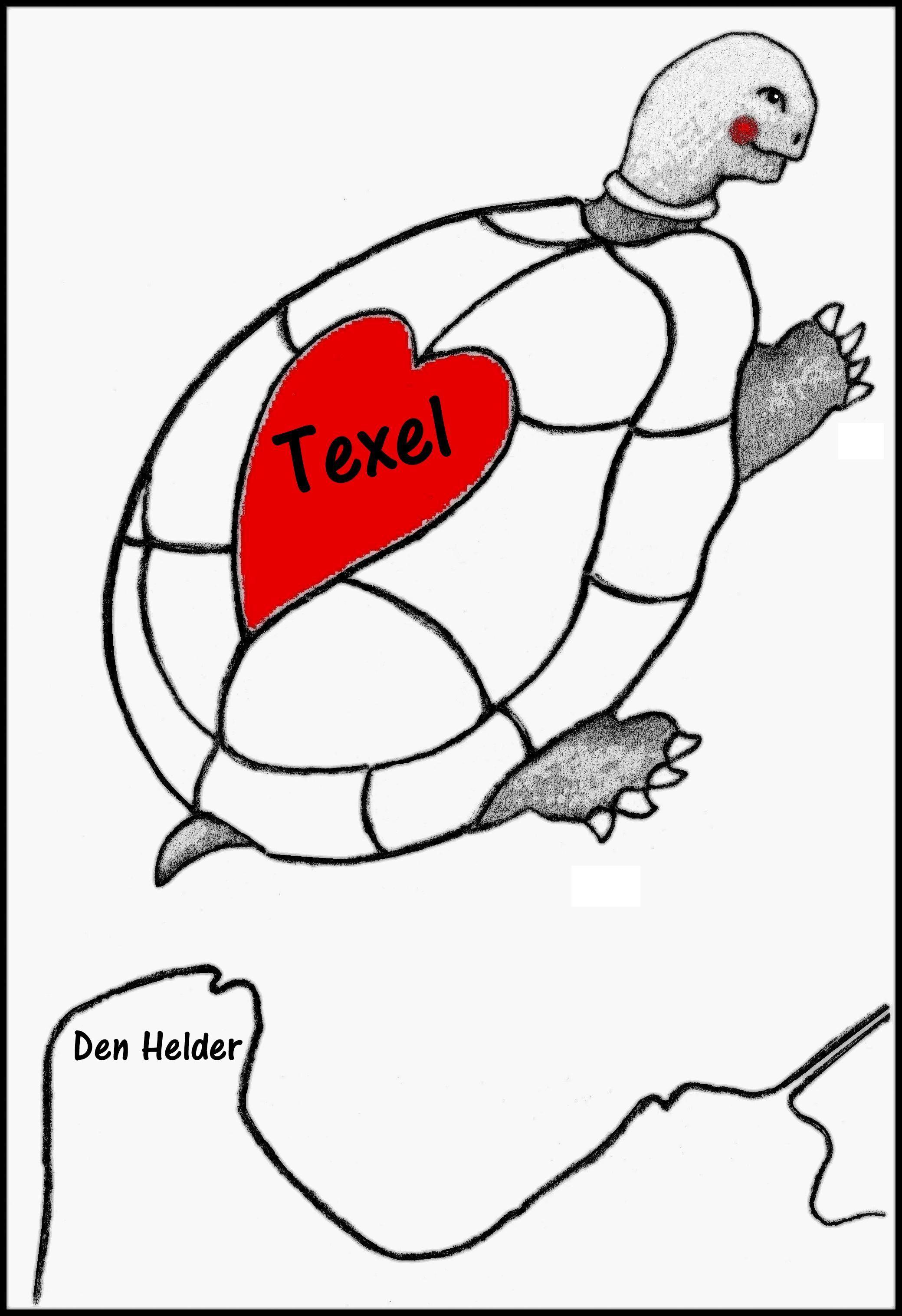 Boris Texel Schildpad Tekening Schildpad Tekenen
