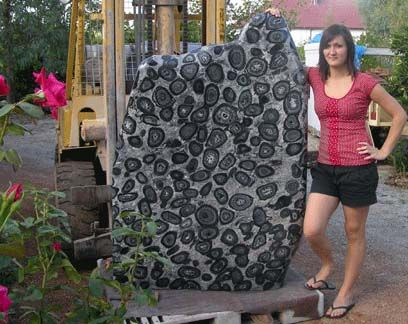 2af8fc6bb Orbicular Granite Stone Art: Floating Stones, Artist | Oddities and ...