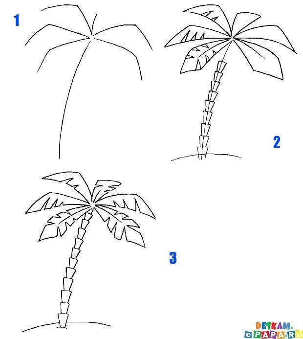 Favorit Palme zeichnen lernen Bäume zeichnen lernen. Zeichnen lernen  EQ73